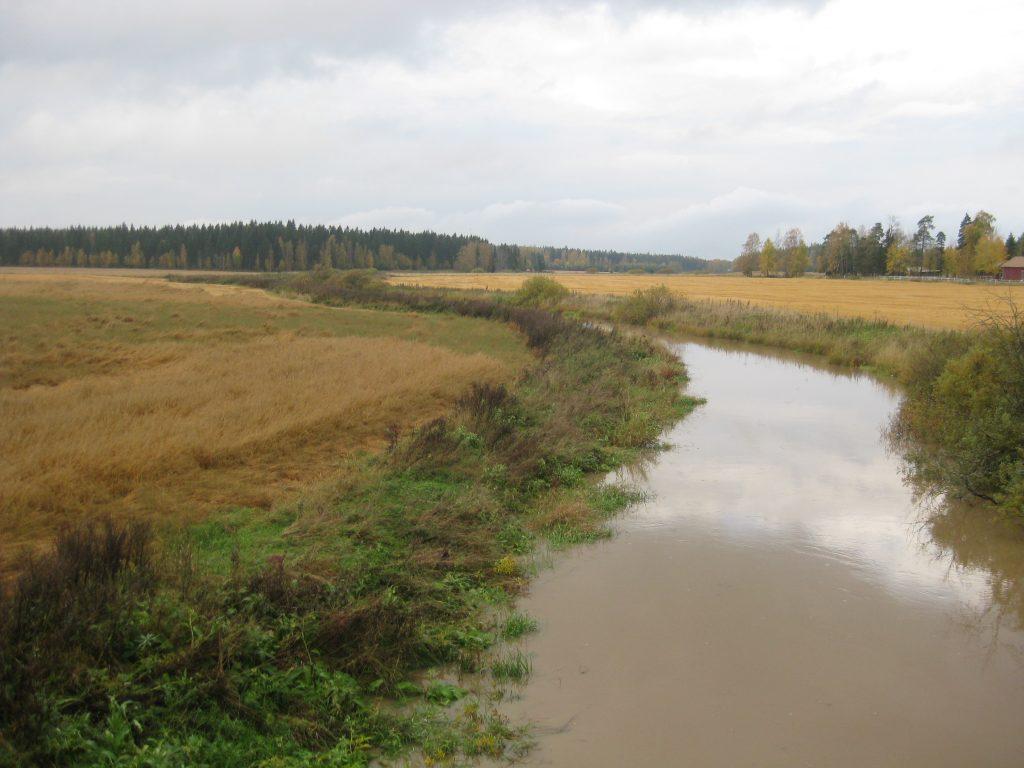Saukko-niitty Koijoessa Forssan ja Jokioisten rajalla 2014